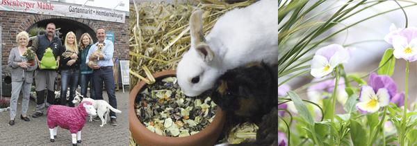 Beratung zu Tier und Garten